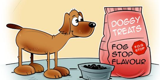 Abbatoirs & Pet Food Processing